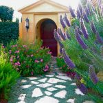 Plants to Cover Your Pathways With| Plants for Pathways, Plants for Foot Traffic, Gardening, Landscaping, Landscaping Tips and Tricks, Landscaping Hacks, Landscape Design, Popular Pin
