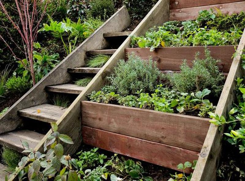 Sloped Yard Spaces, Sloped Yard, Landscaping Ideas, Landscape Ideas, Landscape Ideas Front Yard, Landscaping Ideas Backyard