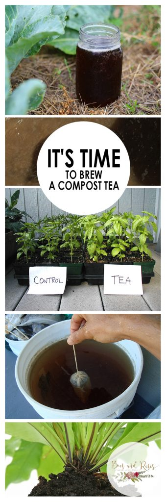 It's Time to Brew A Compost Tea| Compost Tea, Composting Tea, How to Brew Compost Tea, Gardening, Gardening Hacks, Composting 101, How to Compost for Beginners, Popular Pin