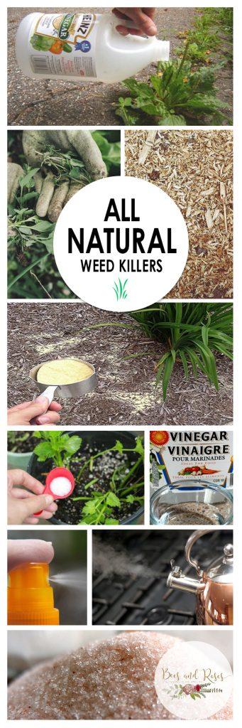 Weed Killers, Natural Weed Killers, Weed Killer Homemade, Weed Killer Vinegar, Weed Killer, All Natural Weed Killer, All Natural Weed Killer Recipe