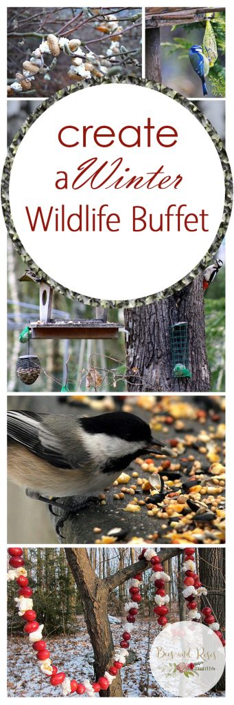 Winter Wildlife Food, Winter Wildlife, Winter Garden, Winter Gardening, Gardening, Gardening Tips, Gardening Tricks, Garden Ideas