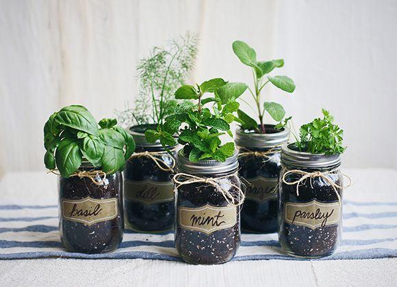 #masonjar #gardenideas #herbgarden #gardening #gardeningideas