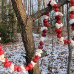 Winter Wildlife Food, Winter Wildlife, Winter Garden, Winter Gardening, Gardening, Gardening Tips, Gardening Tricks, Garden Ideas