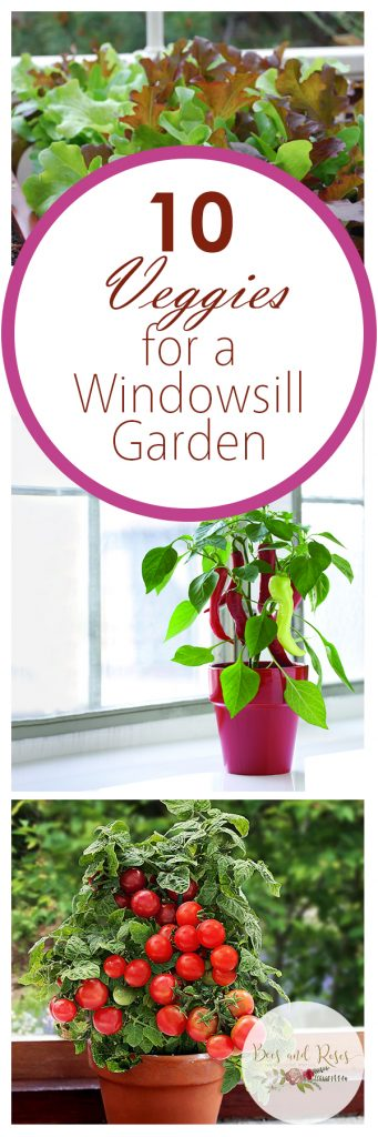 Windowsill Garden, Windowsill Herb Garden, Vegetable Garden, Indoor Garden, Indoor Gardening, Indoor Gardening Ideas