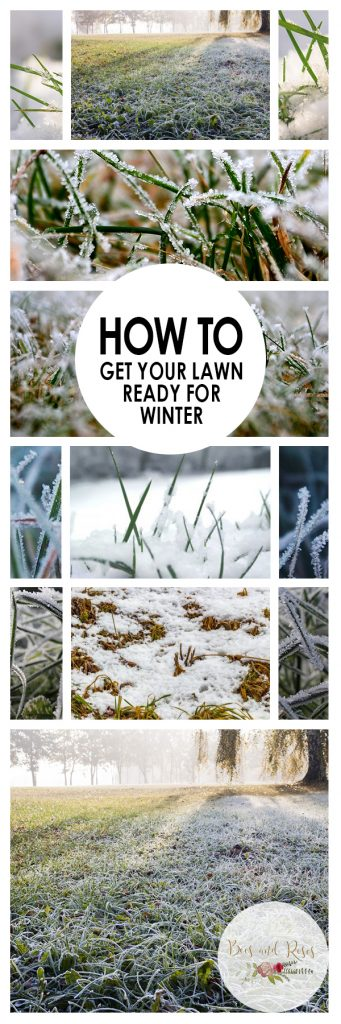 How to Get Your Lawn Ready for Winter| Gardening, Winter Lawn Care, Gardening Hacks, Gardening Tips and Tricks, Winter Gardening, Winter Yard Care, Yard Care Hacks #Gardening #LawnCare #WinterLandscaping
