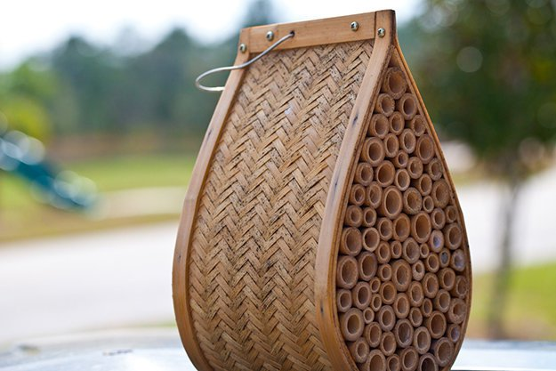 DIY Beehive, Beehive Building, DIY Beehive Decoration, DIY beehive Craft, Beehive Building Crafts