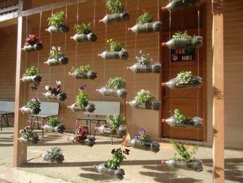 Hanging Garden Ideas | Hanging Garden Tips and Tricks | Ideas for a Hanging Garden | DIY Hanging Garden | DIY Hanging Garden Ideas | Garden | Tips and Tricks