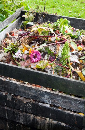 Start composting for beginners with my tried and true composting tips for beginners! Composting can work magic in your garden AND you'll reduce your carbon footprint! Check it out!