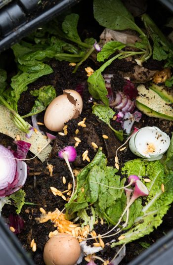 Start composting for beginners with my tried and true composting tips for beginners! Composting can work magic in your garden AND you'll reduce your carbon footprint! See how you can improve your garden.