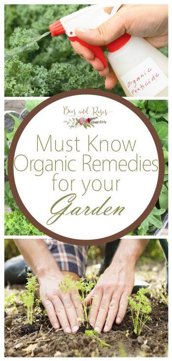 Organic Garden, Organic Garden Remedies, Garden Ideas, Gardening, Gardening Ideas