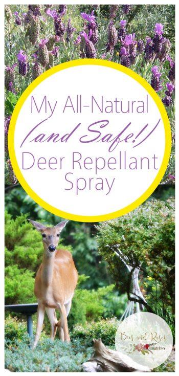 Deer Repellant | Deer Repellent Tips and Tricks | All Natural Animal Repellants | DIY Safe Animal Repellants | DIY Deer Repellent | DIY Deer Repellant Spray | DIY | Repellant