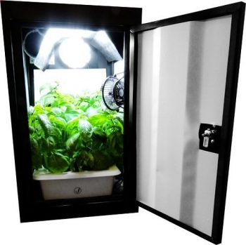 Indoor Grow Tents … Camping With Plants | Indoor Grow Tents | Camping | Plants | How to Care For Your Plants | Garden