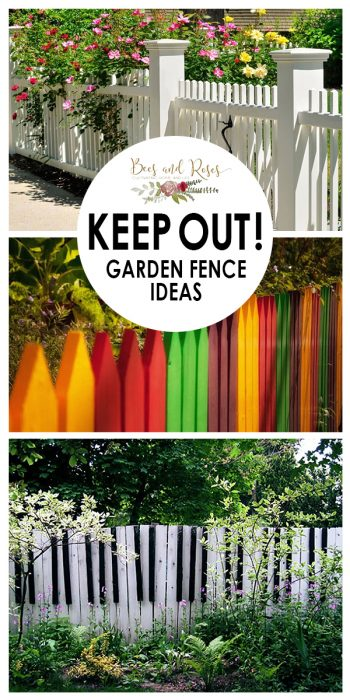 Garden Fence Ideas Keep Out Bees And Roses