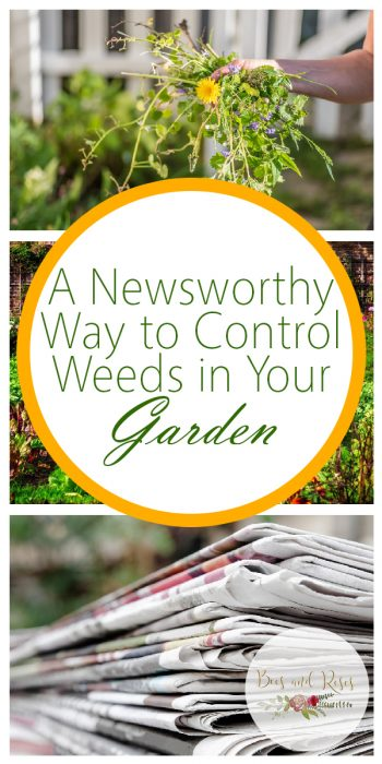 Control Weeds | Tips and Tricks to Control Weeds | Hacks to Control Weeds | Controlling Weeds Tips and Tricks | Learn How to Control Weeds
