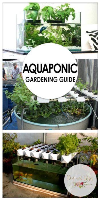 Aquaponic Gardening Guide   Aquaponic Gardening   Aquaponic Garden   Aquaponic Gardening Tips and Tricks   Aquaponic Gardening Hacks   Guide to Aquaponic Gardening