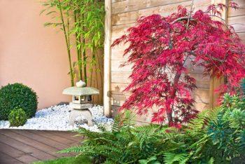 Zen Garden   Zen Garden Tips and Tricks   Zen Garden Tips   Zen Garden Hacks   DIY Zen Garden   DIY Zen Garden   How to Make a Zen Garden   How To Build a Zen Garden