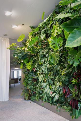 Vertical Gardens | Vertical Garden Ideas | Vertical Garden Design Ideas | Vertical Garden Tips and Tricks | Garden Design | Garden
