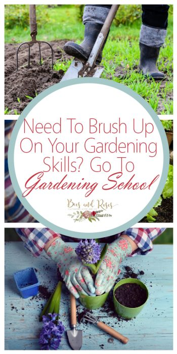 Gardening Skills | Tips and Tricks to Build Gardening Skills | Gardening Skills Hacks | Gardening Skills | Gardening Skills | Gardening Skill Builder