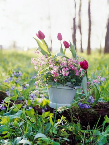 spring container | flowers | planters | flower container | spring | spring gardening | Spring Container Ideas