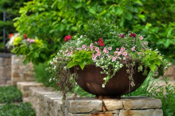 spring container | flowers | planters | flower container | spring | spring gardening