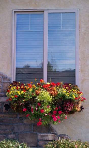 pamela crawford | hanging baskets | window box | hanging planter | window basket | flowers | curb appeal | window basket ideas | hanging planter ideas | flower | hanging basket ideas