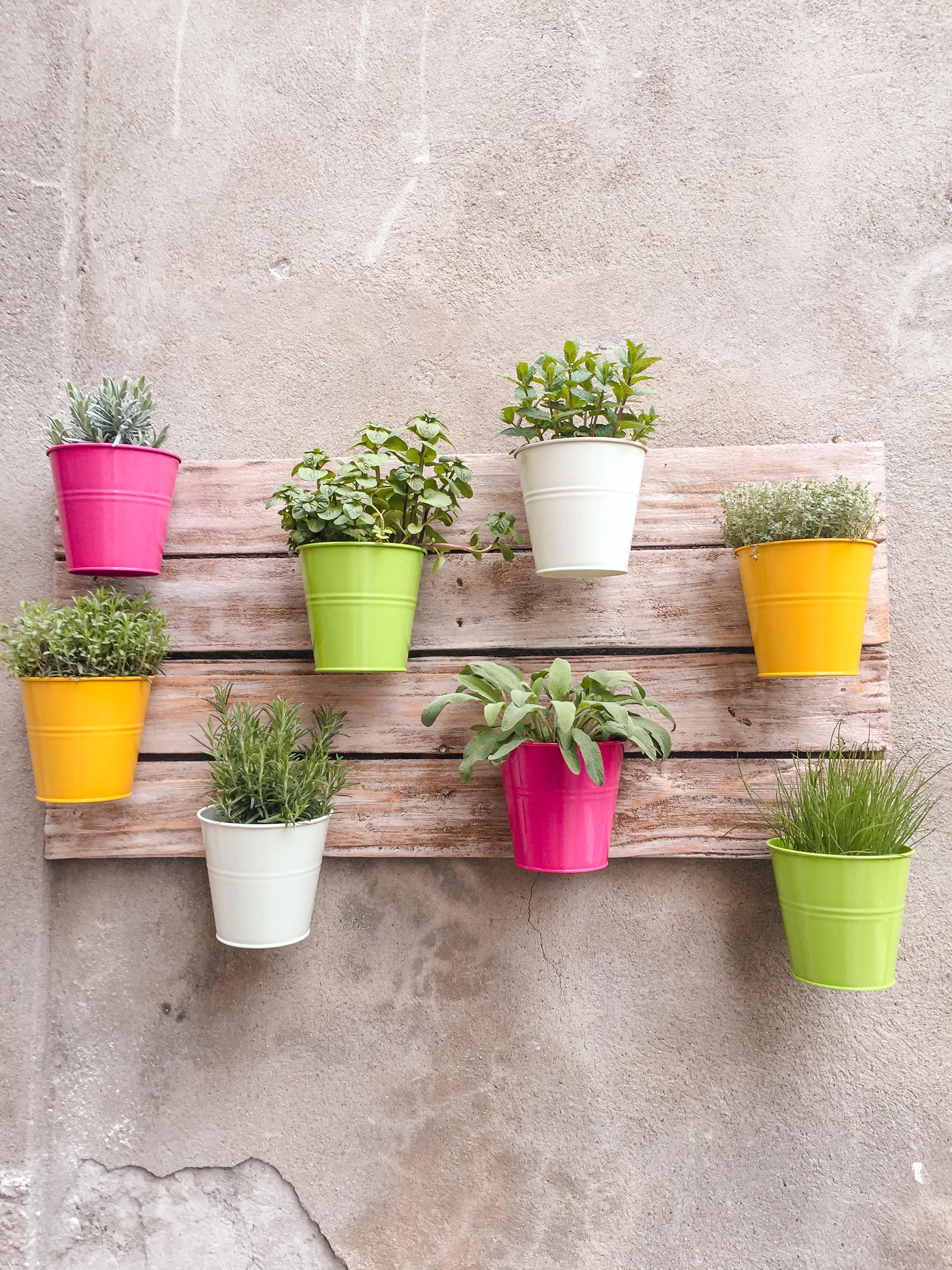 March | Gardener's Almanac | Gardener's Tips | Gardening Tips | Yard Care | Garden Care | Things To Do In March | Gardening In March