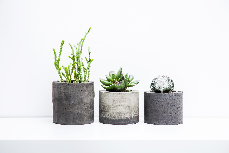 pots   pots for plants   unusual pots for plants   unique pots for plants   creative pots for plants   plants   potted plants