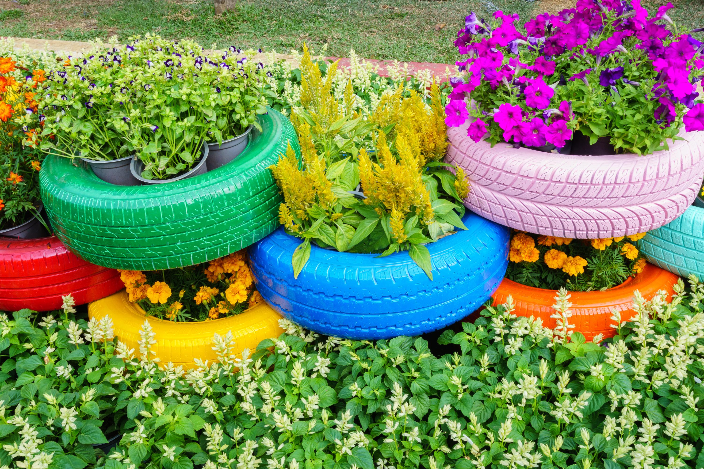pots | pots for plants | unusual pots for plants | unique pots for plants | creative pots for plants | plants | potted plants