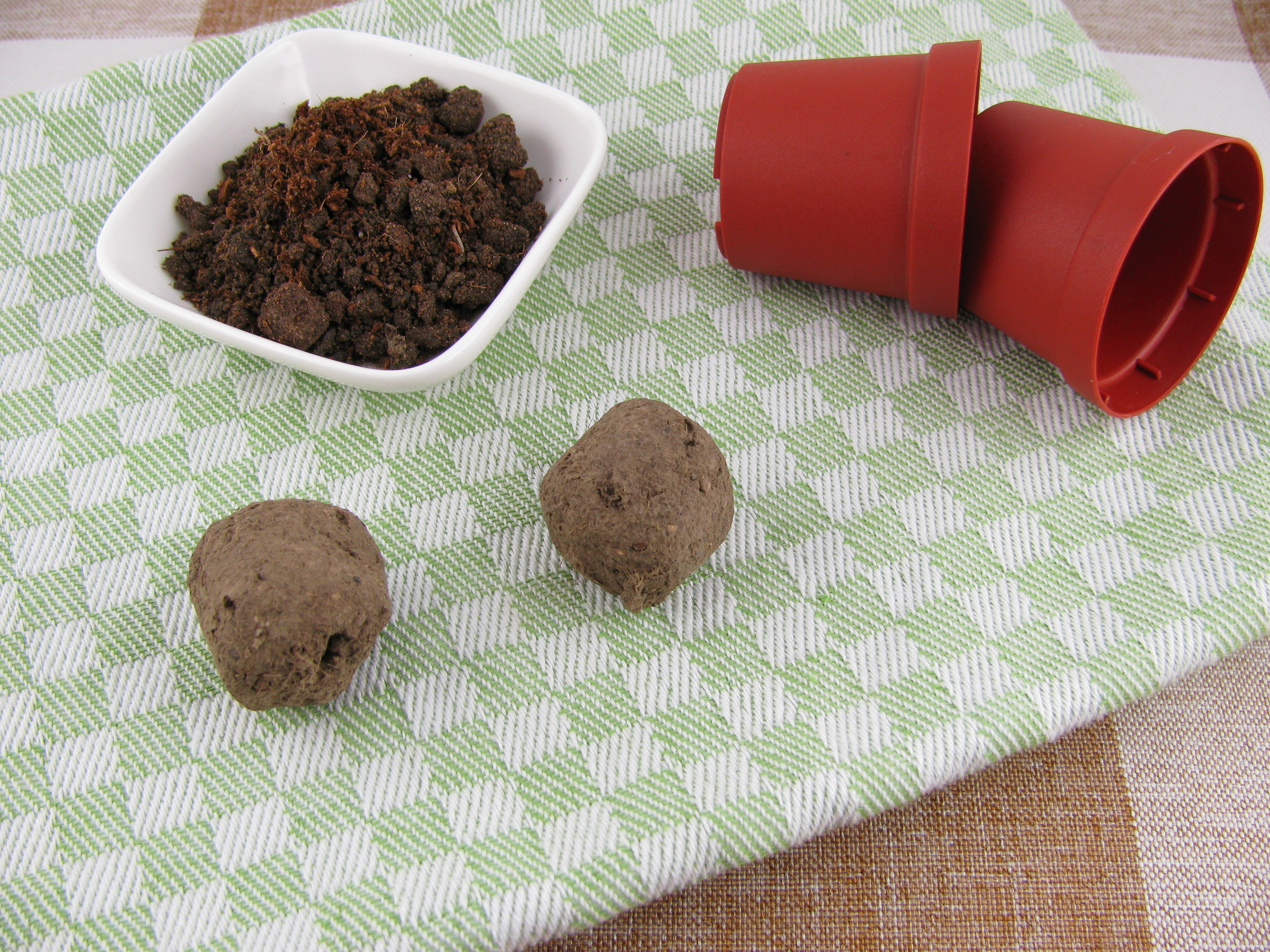 seed bomb | seeds | seed | spring | plant | gardening | garden | flowers | color | how to | diy | diy seed bomb | seed bombs