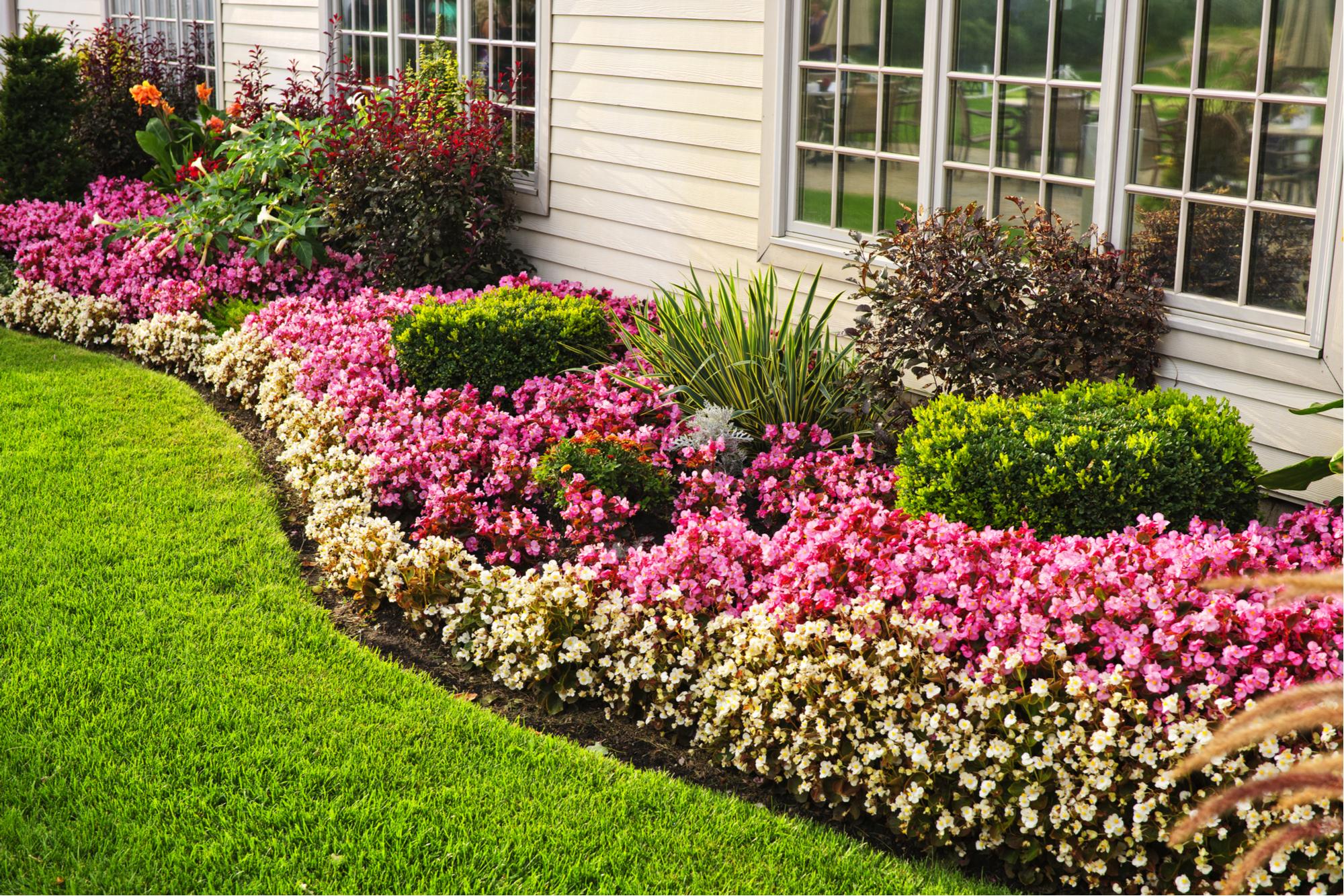 edgy | garden | tools | garden tool | garden edging tool | edging tool | tool for edging | garden tips | tips for gardening | tips for edging | edging tips