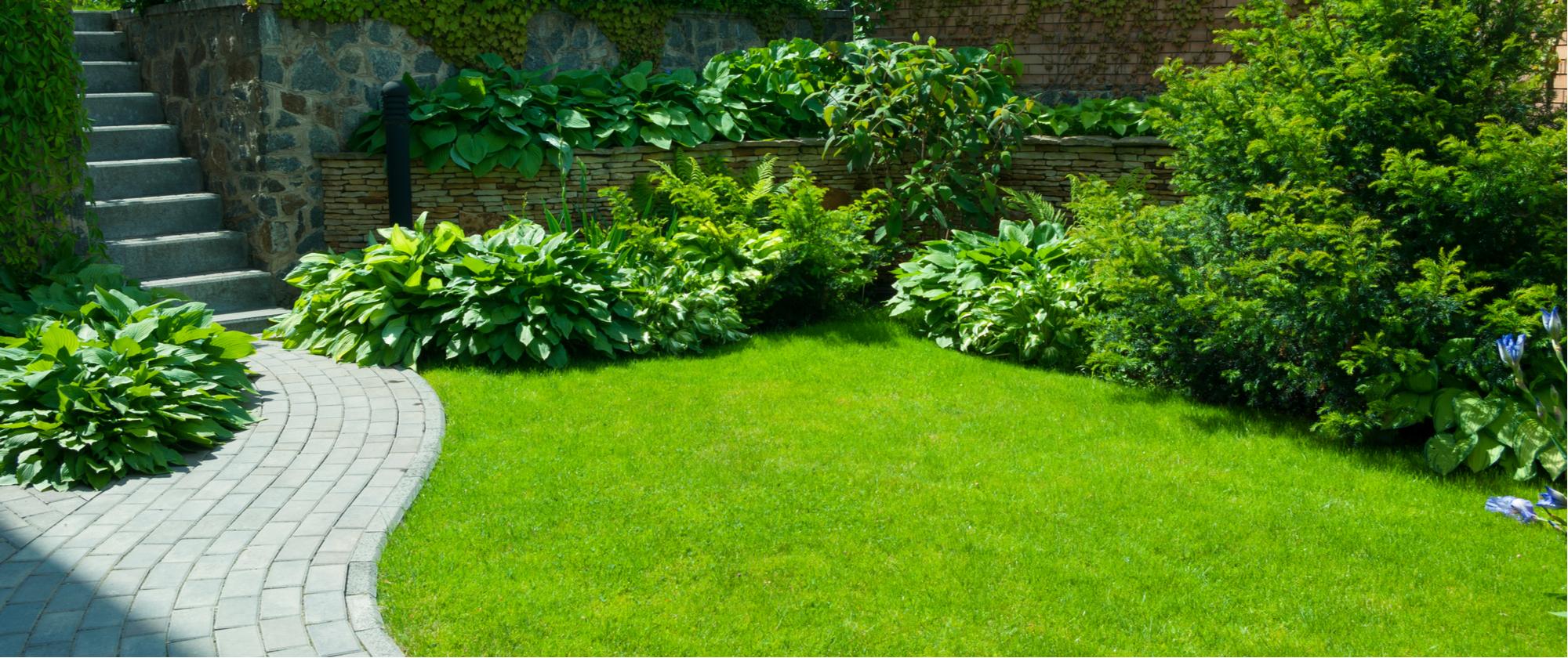 mlb | grass | green grass | grounds crew | mlb grounds crew | tips and tricks | mlb grounds crew tips | tips for green grass