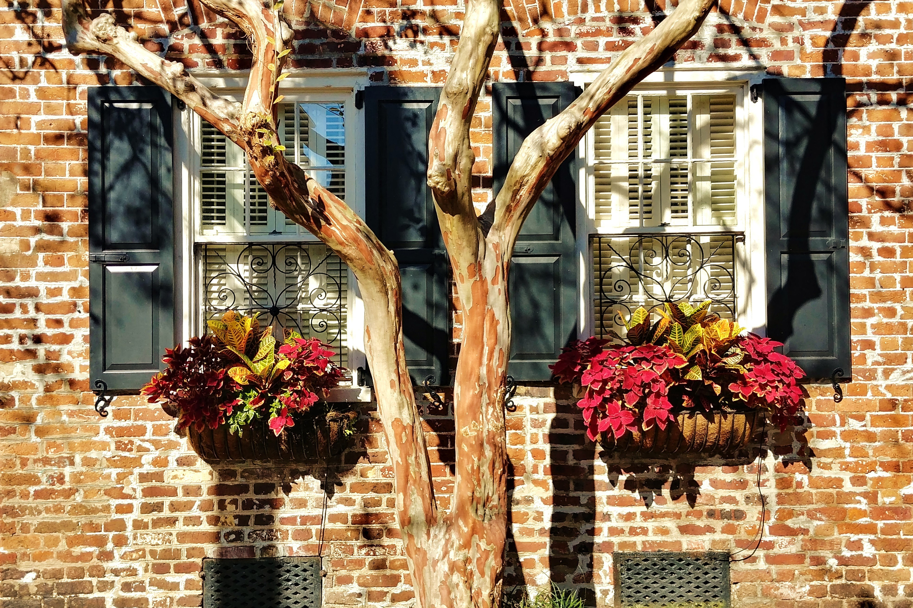 window box | fall | fall decor | decor | window box decor | fall window box decor | fall window boxes