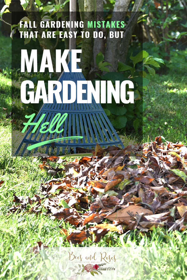 fall gardening mistakes   fall gardening   gardening   gardening mistakes   garden   fall   fall mistakes