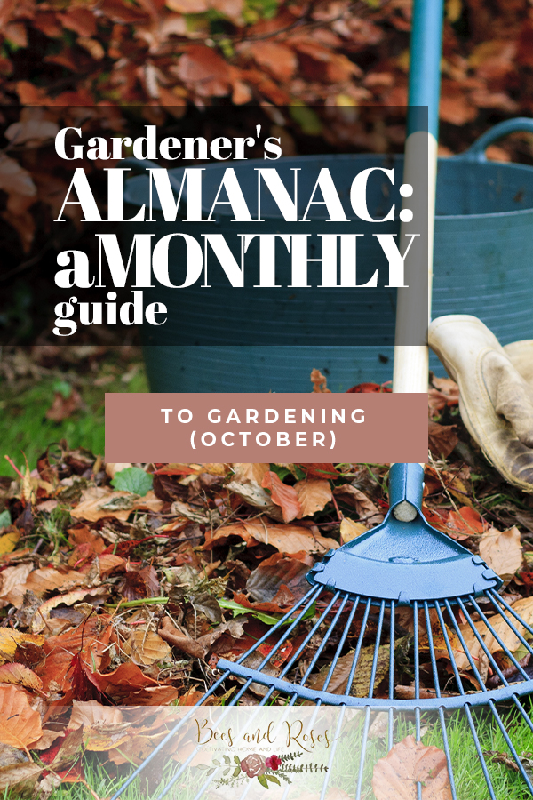 October   October gardening   gardening   winterize   winterize your garden   fall   fall gardening   gardener's almanac