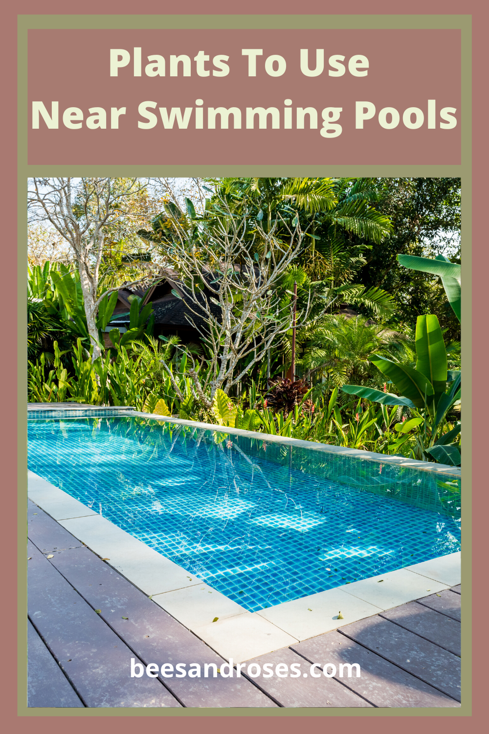 Pools are so much fun for families. But as a landscaper, I know what makes pools really stand out from the rest. It's the landscape around them. Use these plants near swimming pools to soften the hardeness of the design and blend into the landscape. Read on for a list of plants. #plantstousenearswimmingpools #poollandscapeideas #landscape #beesandrosesblog