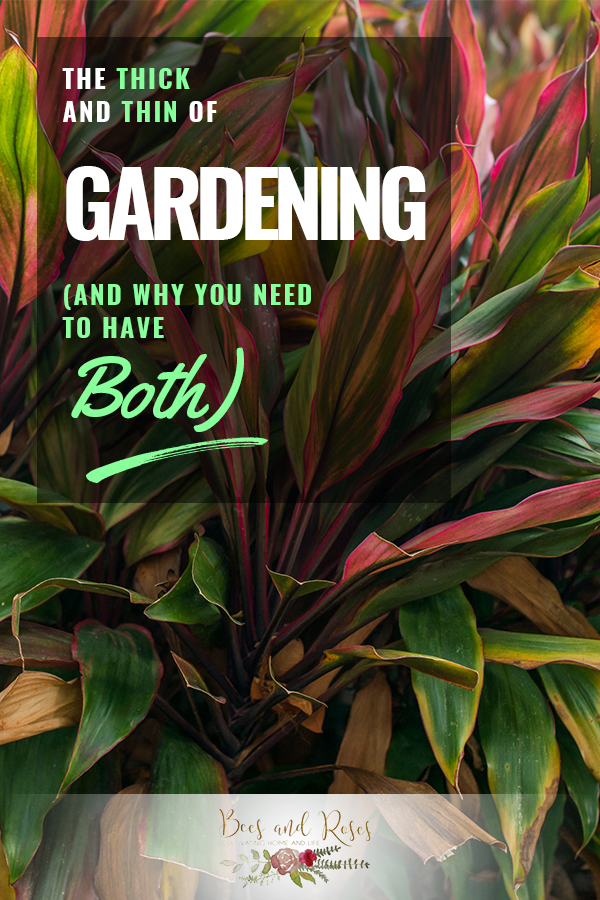 thick | thin | thick and thin of gardening | gardening | pruning | garden | tips and tricks
