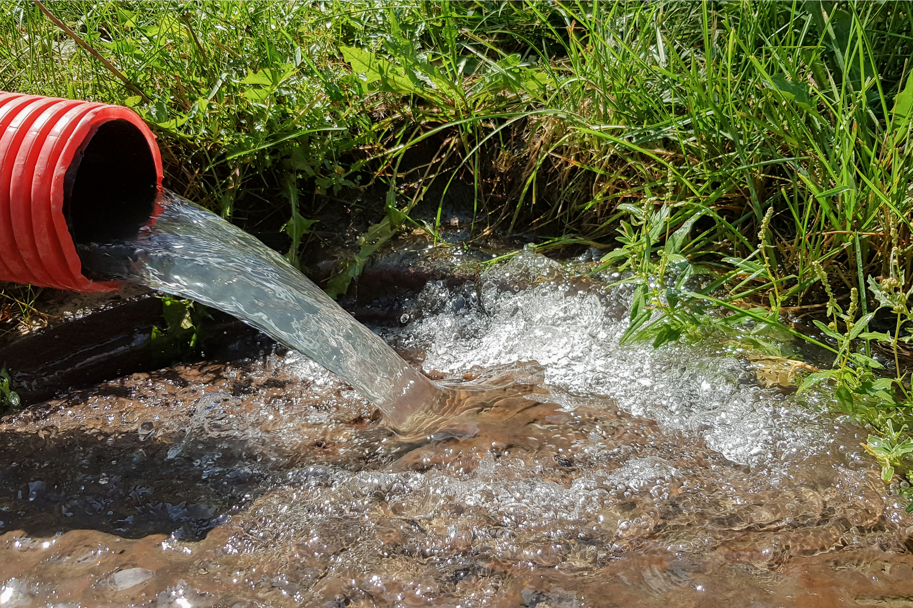 Deep watering is an important part of preparing your yard for the fall and winter months. Here's everything you need to know about deep watering.
