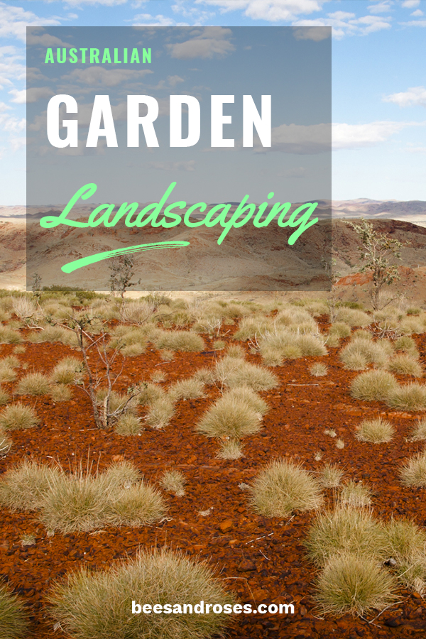 Australia knows a little bit about droughts and how to landscape in that environment. So, we wanted to show you some ideas to get you started should you choose to landscape using this method. If you care about water conservation, this style is a great option. Keep on reading to learn about drought tolerant plants, grasses and Kangaroo paw. #drougtolerantlandscape  #landscapeideas #waterconservation