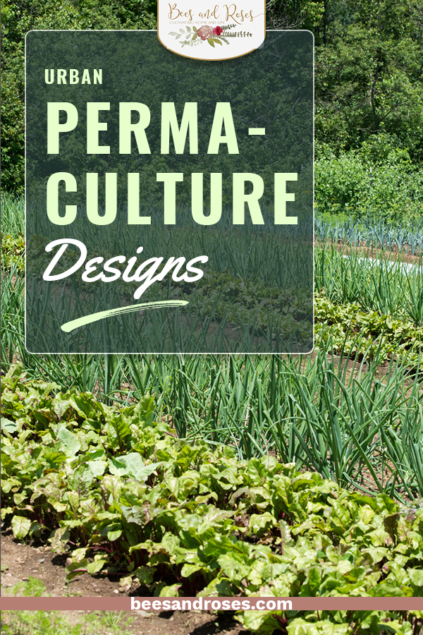 Gardening has come full circle. For centuries, agriculture worked with nature. Then, with the introduction of pesticides and chemical fertilizers, that all changed. Now, we are recognizing that gardening can and must work with nature. That is also true of urban gardens. Now you can learn all about urban permaculture designs for your backyard or patio! #urbanpermaculturevegetablegardendesign #urbangardendesign