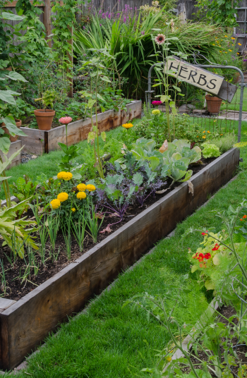 Now that we are three weeks into social distancing, I'm finding that I am getting INCREDIBLY bored! I can't wait to get outside. Fortunately, one of the best things about gardening is that you can do it alone or with a group. If you are eager to get outdoors and get your hands dirty, try these solitary gardening ideas. You will love them.
