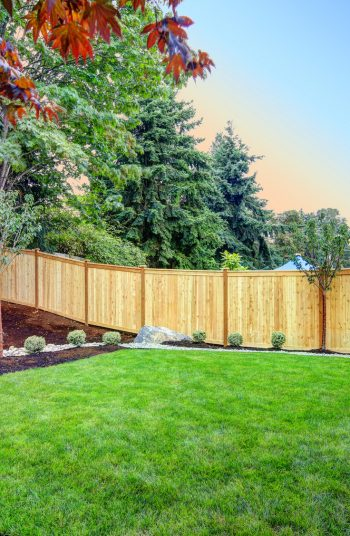 It's warming up in my neck of the woods and I'm spending all sorts of time in my backyard. However, if you are like me, your backyard may have taken a beating over the winter. If that is the case, one of these DIY backyard projects should help you liven things up just a little bit. You will love these DIY projects.