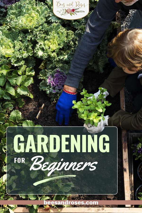 It doesn't matter if you are new to gardening, these gardening tips for beginners will teach you everything you need to know about the art of gardening and then some. Learn how to grow your own flowers, vegetables, and more by checking out this helpful article. #beesandrosesblog #gardeningforbeginners #gardening