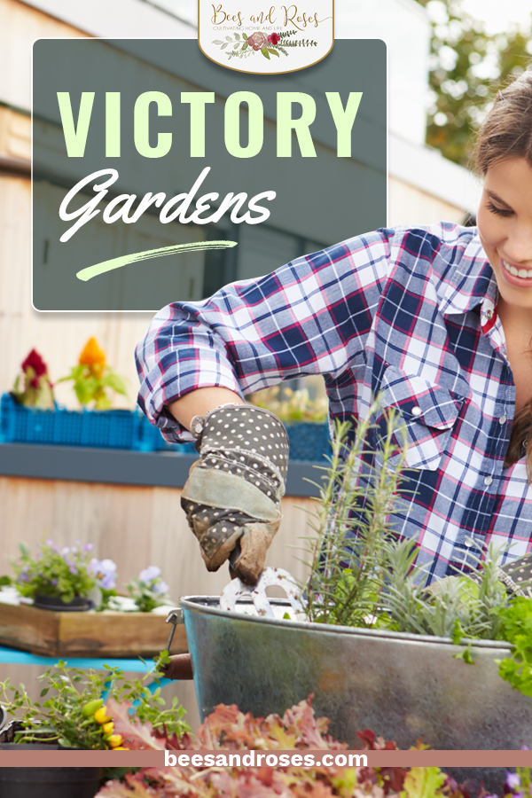 Looking for the latest in gardening ideas? Try building your own victory garden! Victory gardens have been around since the first world war, and they are emerging again as a great way to grow vegetables for your family when little space is available. #beesandrosesblog #gardeningideas #vegetablegarden