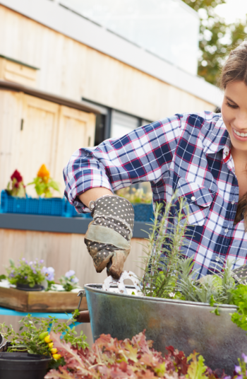 Victory Gardens are a blast from the past. They emerged during World War 2 as a way to help with the shortage of food during the war. They have once again become popular so why not give it a try. You will love these ideas!