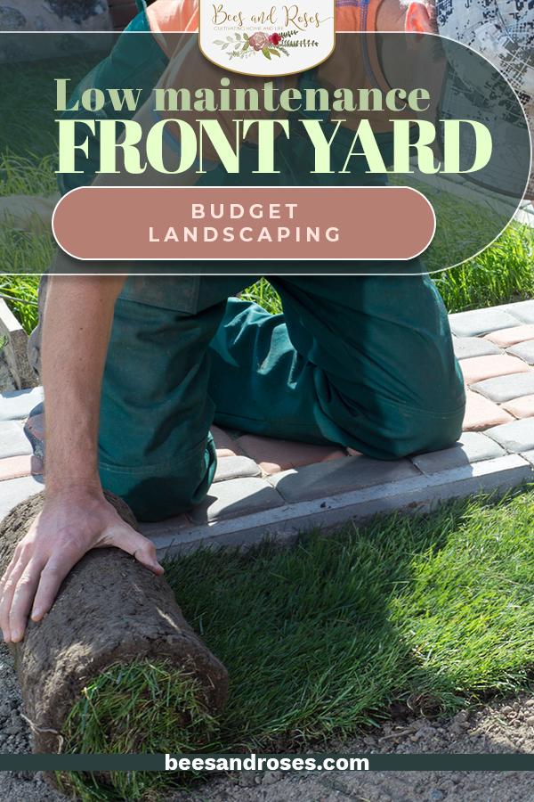 Landscaping your front yard can cost a lot of money, but it doesn't have to! Use these tips and tricks to landscape your front yard so that it looks seriously beautiful on a budget. #beesandrosesblog #landscaping #budget