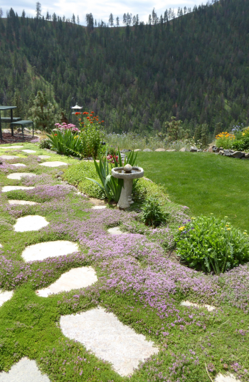 Just because you are on a budget doesn't mean that you can't make your garden look absolutely amazing. With the right materials, anyone can pull off these incredible budget garden inspiration ideas.