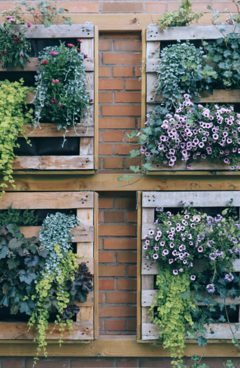 Just because you are on a budget doesn't mean that you can't make your garden look absolutely amazing. With the right materials, anyone can pull off these incredible budget garden inspiration ideas. Take a look!
