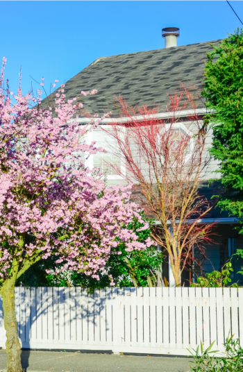A good fence is important to any yard, privacy-wise. But the unfortunate reality is that it can be difficult to landscape along a fence! Try planting trees next to your fence! Check out these awesome backyard landscaping ideas along fences to complete your space.
