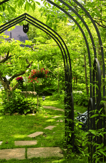 A good fence is important to any yard, privacy-wise. But the unfortunate reality is that it can be difficult to landscape along a fence! A trellis is always a good idea! Check out these awesome backyard landscaping ideas along fences to complete your space.