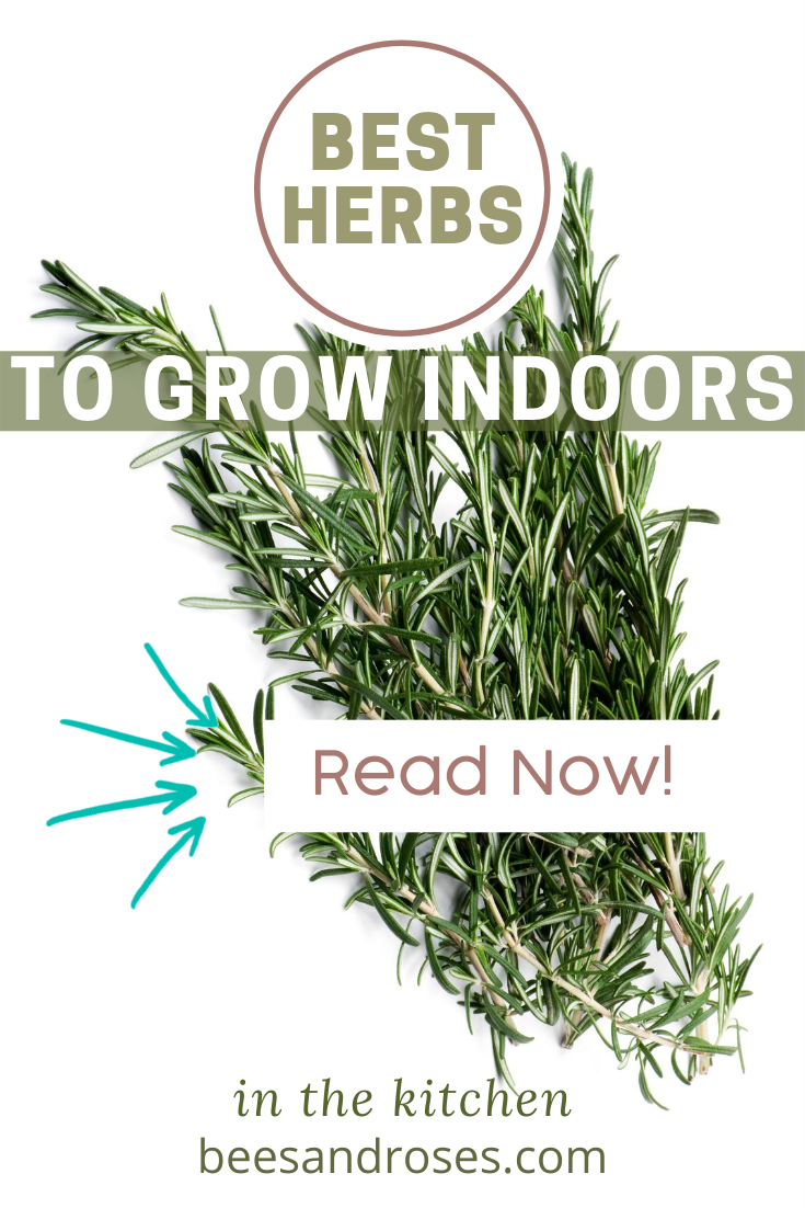 Ahhh, fresh herbs. They just taste better, don't they?!! Grow your own herbs all year long indoors and enjoy the benefits! #beesandrosesblog #herbs #indoorplants